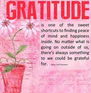 gratitude-barry-neil-kaufman-quotes-sayings-pictures